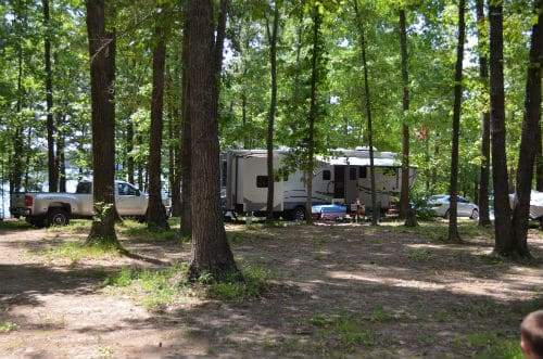Ticks, Trees and Tennessee