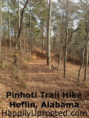 Pinhoti1
