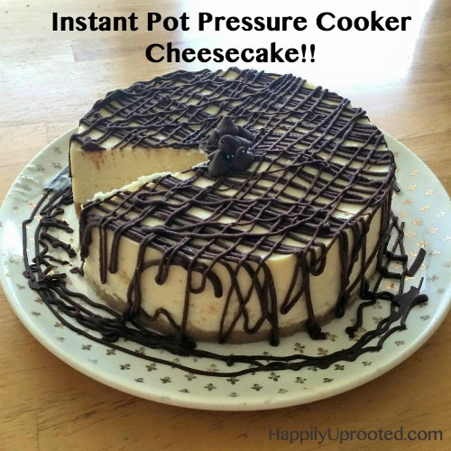 Instant Pot Pressure Cooker Cheesecake